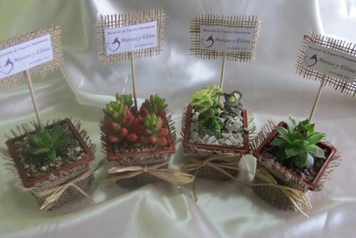 recuerdos matrimonio ecol gicos plantas suculentas y cactus recuerdos a pen 5 en preciolandia. Black Bedroom Furniture Sets. Home Design Ideas