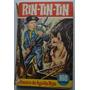 Rin Tin Tin: El Tesoro De Aguila Roja. Perro H�roe
