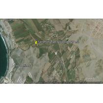 Bujama Baja Km.91 Terreno 8727.26 M2.- A 250 Mt. Del Mar