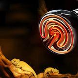 Foco Resistencia Cerámica Incubadora Termostato Reptiles
