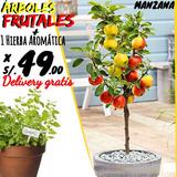 Arboles Frutales