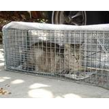 Jaula Trampa Para Gatos Calidad Y Garantía De Buenas Captura