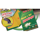 Trampa Para Ratas Ratones Pericotes Pegamento Lure Traps