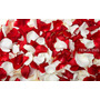 Petalos Rosa Artificiales Decoracion Para Ese Dia Especial