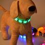 Collar Led Para Mascotas Perro Gato Talla M Regulable